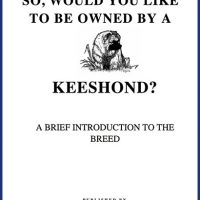 So, Would you like to be owned by a Keeshond?