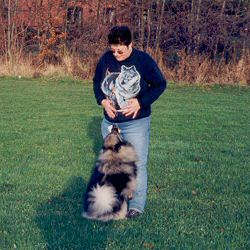 Keeshond Scenting