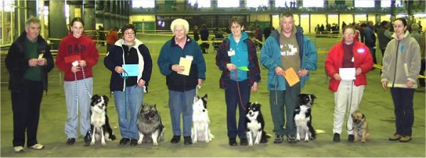 Keeshond Stay Exercises