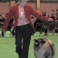 Crufts 2007