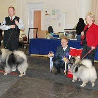 North of Keeshond Club  Championship Show 2010