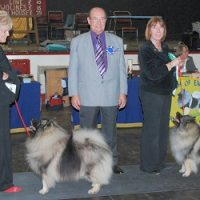 North of England Keeshond Club  Championship Show 2008