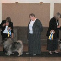 North Of England Keeshond Club July Open Show 2005