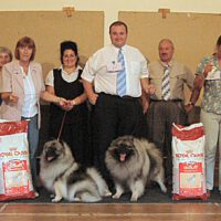 North of England Keeshond Club July Open Show 2006