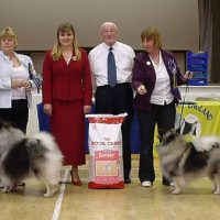 North of England Keeshond Club  July Open Show 2007