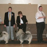 North of England Keeshond Club March Open Show 2005