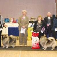 North of England Keeshond Club March Open Show 2011