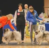 North of England Keeshond Club 2017